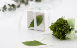 Holidays White Gift Box