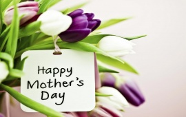 Honoring Birth Mothers On Mother's Day