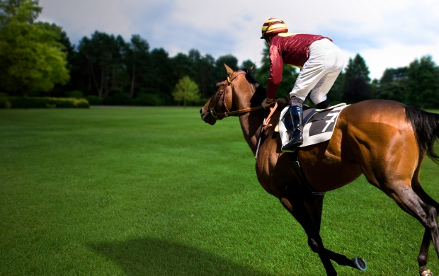 Horse Racing Glorious (click to view)