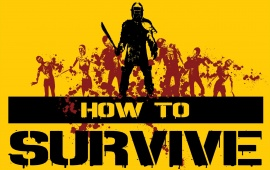 How To Survive 2013