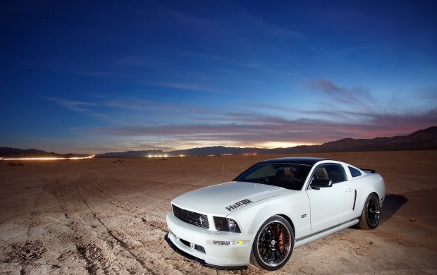 H&R Springs FMJ Mustang (click to view)