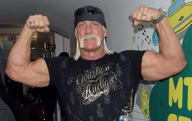 Hulk Hogan (click to view)