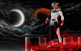 Ichigo Vasto Lorde Bleach