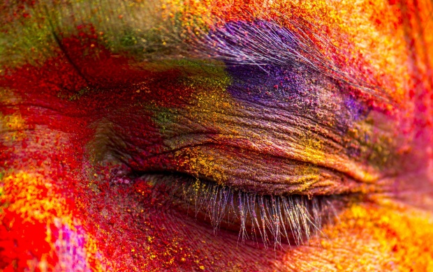 India Celebrates Holi (click to view)