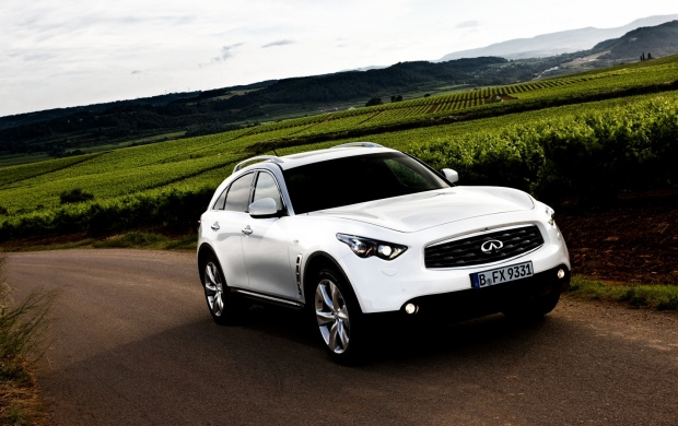 Infiniti FX30d 2010 (click to view)