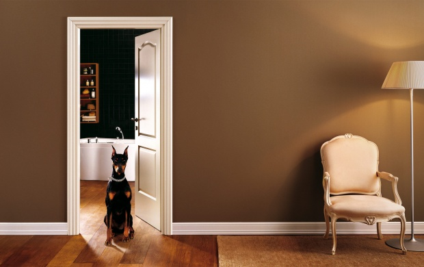 Interior Room Chair And Dog (click to view)
