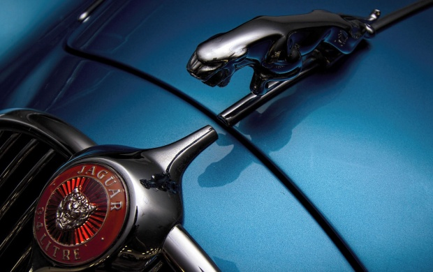 Jaguar 3.4 Litre Logo (click to view)
