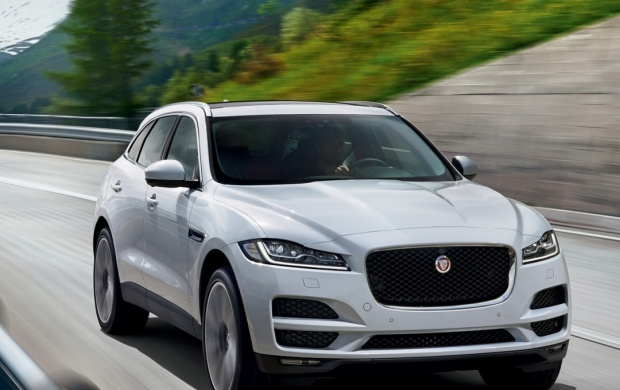 jaguar f pace portfolio 2015 wallpapers. Black Bedroom Furniture Sets. Home Design Ideas