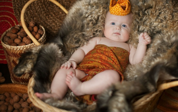 King Baby (click to view)