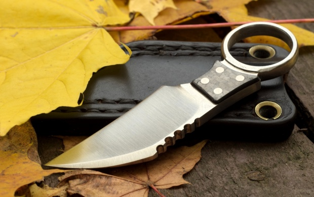 Knife Weapon And Leaves (click to view)