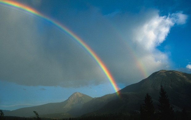 Kootenay Rainbow (click to view)