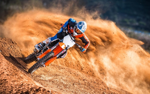 KTM 350 SX-F 2017 (click to view)