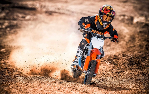 KTM 50 SX 2017 (click to view)