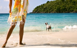 Lady With The Dog On The Beach