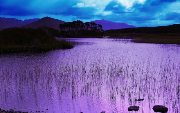 Lake Purple Water (click to view)
