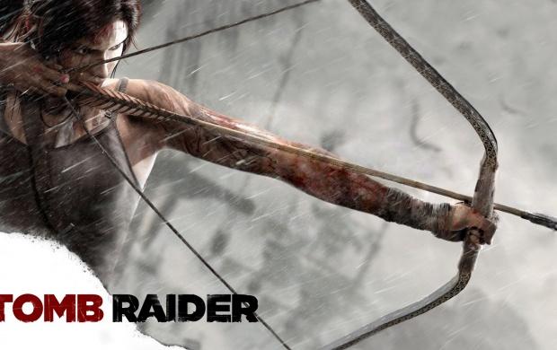Lara Croft Tomb Raider 2013 Wallpapers
