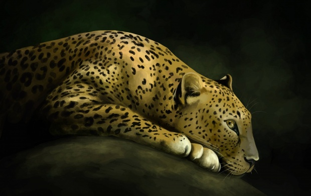 Leopard Art (click to view)