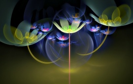 Light Fractal Flower Abstract