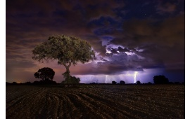 Lightning Night Storm