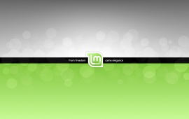 Linux Mint Came Elegance