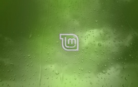Linux Mint Green Background