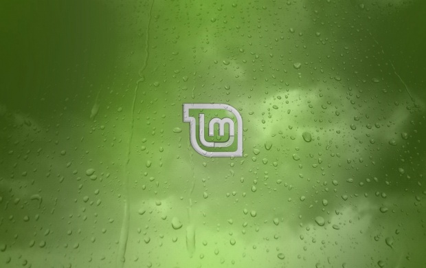 Linux Mint Green Background (click to view)
