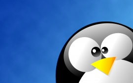Linux Tux In Blue