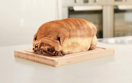 Loaf Dog Cute