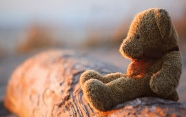 Loneliness Teddy Bears