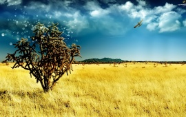Lonely Tree on Yellow Field