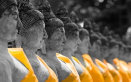 Lord Buddha In Line