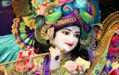 Lord Krishna Beautiful Costume
