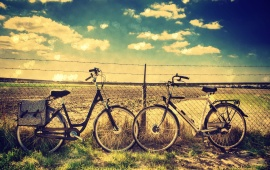 Love Bicycle Fencing