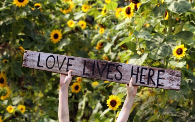Love Lives Here (click to view)