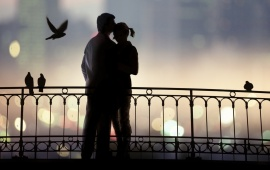 Love Pair And Birds