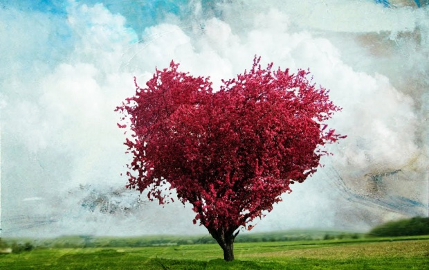 Love Tree (click to view)