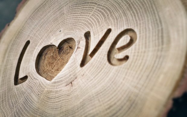 Love Written On Wood (click to view)