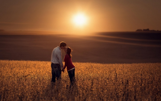 Lovers Kiss At Sunset Field (click to view)