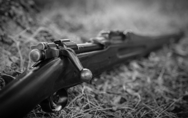M1917 Enfield (click to view)