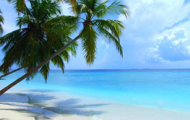 Maldives Beach Scenery Wallpapers