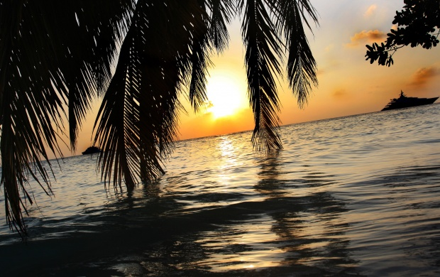 Maldives Sunset (click to view)