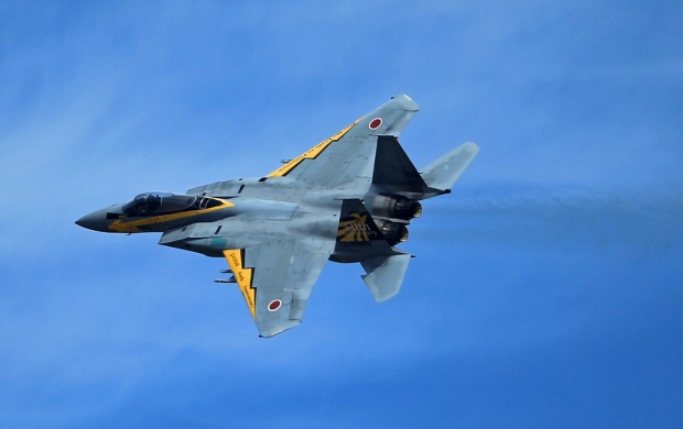 McDonnell Douglas F-15 Eagle Fighter (click to view)