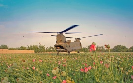Military Helicopter With Flower