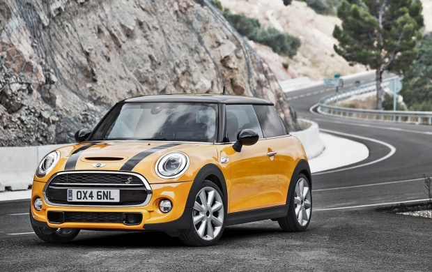 Mini Cooper 2014 (click to view)