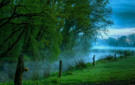 Misty Morning River
