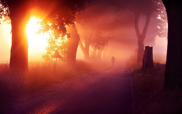 Morning Mist Road (click to view)