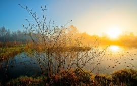 Morning Sun Over Misty Lake