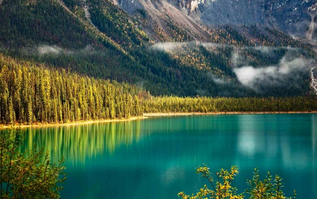 Mountain Lake And Trees (click to view)