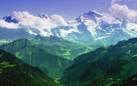 Mountains Covered in Green
