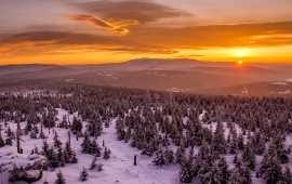 Mountains Sunset Winter Trees